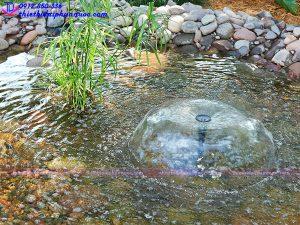 Vòi phun nước hình nấm 12